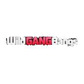 Wild GangBangs